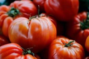 tomaten - jonas ingold