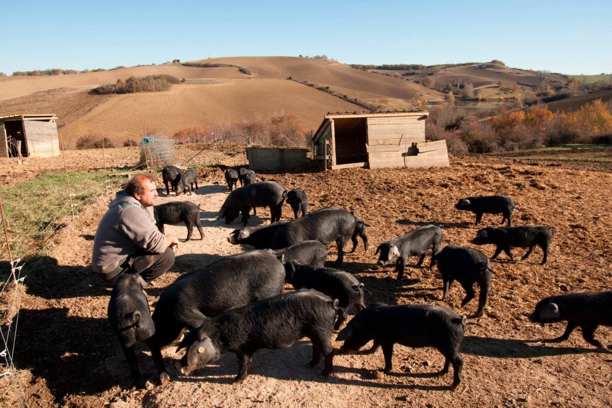 agriculteurs d'occitanie