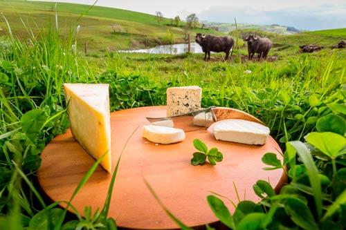 fromage occitanie