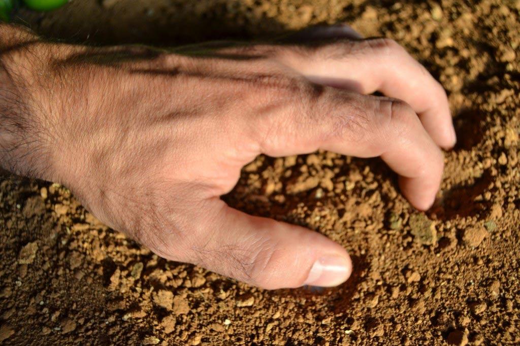 Main dans le sable