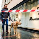 chiens guides d'aveugles toulouse