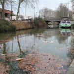 [Dossier] 4 actions pour (re)découvrir et préserver le canal du Midi