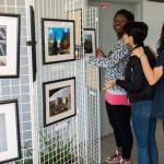 [Dossier] Des lycéens photographient la beauté du quartier du Mirail