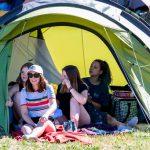 Ecaussystème, le festival qui mêle musique et écocitoyenneté