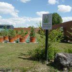 [Dossier] Le pollinarium : une alerte efficace contre les pollens