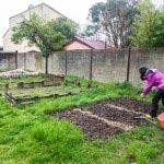 [Dossier] Une oasis de verdure au pied des tours