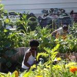 3 solutions pour mieux vivre avec ses voisins