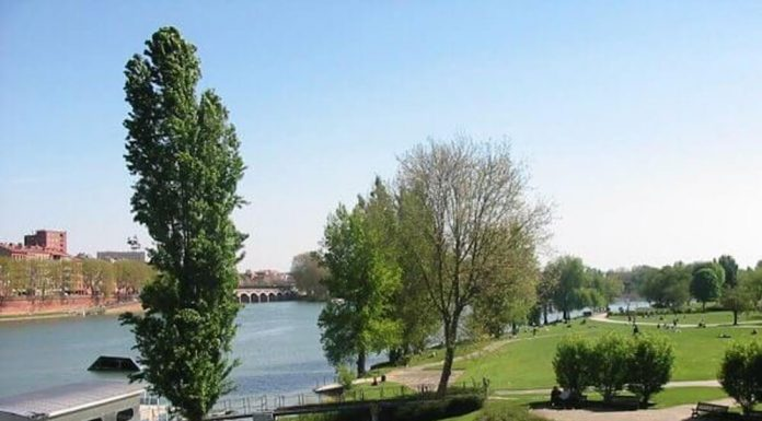 Toulouse prairie des filtres