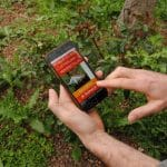 Géoinsecta : une application communautaire de signalement des insectes ravageurs