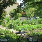 Colibri Paysage : des conseils pratiques pour biocontrôler son jardin