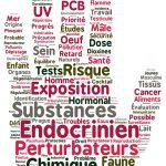 Une charte contre les perturbateurs endocriniens : Toulouse s'engage !