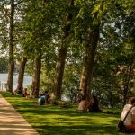 Forum « Toulouse + verte », ou comment la collectivité va se végétaliser