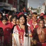 « Oka Amazonie », le Museum de Toulouse vous invite dans le Poumon de la Terre