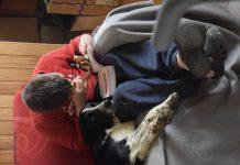 Câlinsoins : Soigner les troubles du comportement des enfants avec des animaux