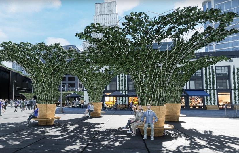 Projet de Canopée urbaine