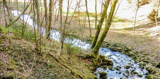 La préfecture de Haute-Garonne constate que les débits des cours d'eau cessent de baisser; grâce aux pluies de ces dernières semaines. Ruisseau Restriction eau Haute-Garonne©DamienCret