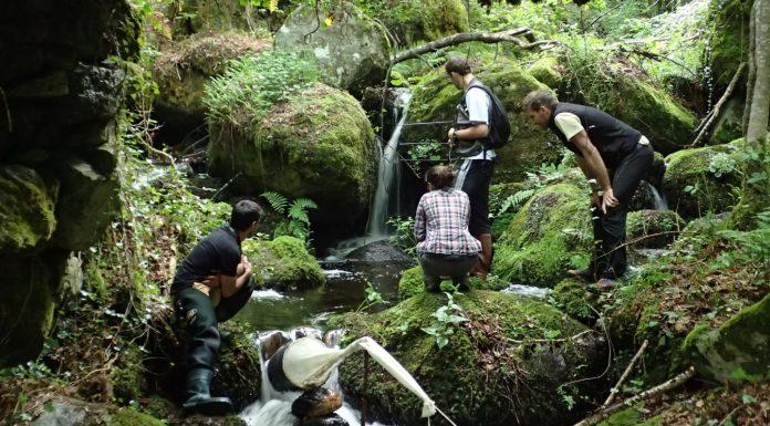 conservatoire espaces naturels Occitanie