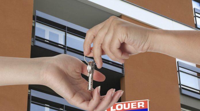 logement-location-vente