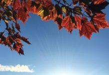 Un beau temps d'automne pour ce mercredi 30 septembre