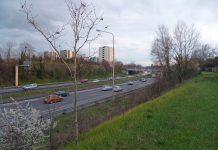 Toulouse Métropole va végétaliser les écrans acoustiques du périphérique, afin de lutter contre la prolifération des tags ©Toec