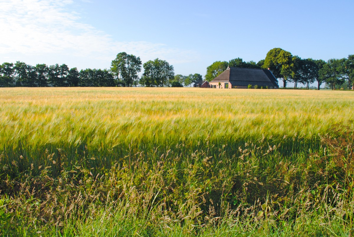 safer-stock-terres-agricoles