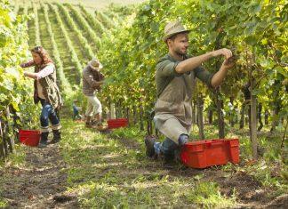 Action logement travailleurs saisonnier©FranceStratégie