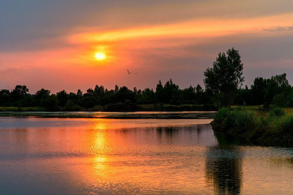 Lac de Bordeneuve Frouzins