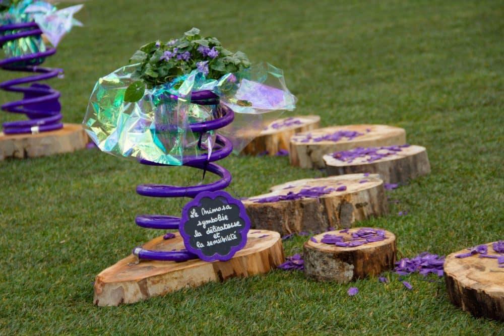 fete de la violette Toulouse