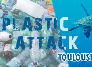 Visuel plastic attack Toulouse