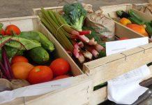 Occitanie solidarité alimentaire