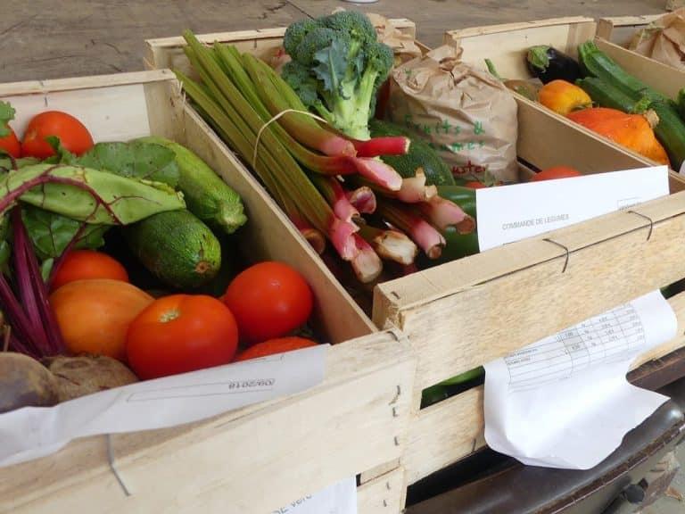 Montauban fête la Journée nationale du don agricole