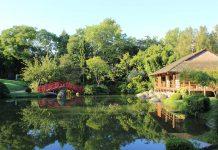Zone fraicheur Toulouse Le Jardin Japonais à Toulouse
