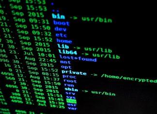 Selon Vincent Nicomette, chercheur et professeur en sécurité des systèmes d'information à Toulouse, il y a un besoin criant d'experts en cybersécurité CC joffi-Pixabay