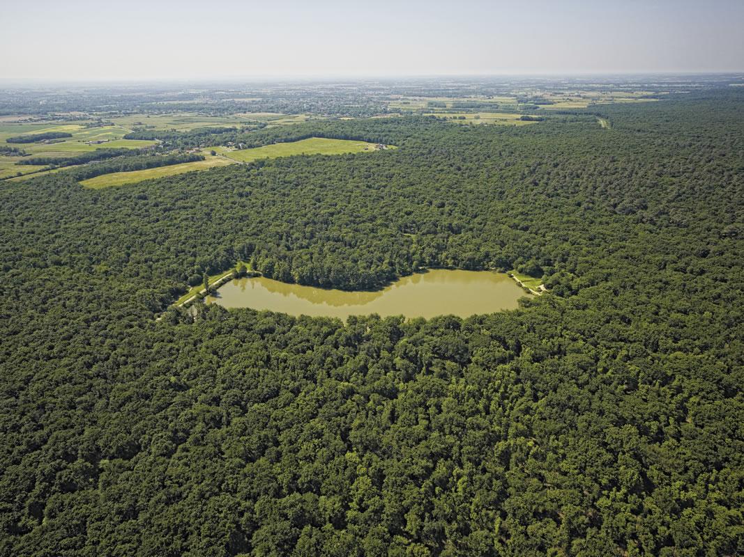 Classée Espace naturel sensible, la Forêt de Bouconne fera l'objet de mesures de protection et de gestion.