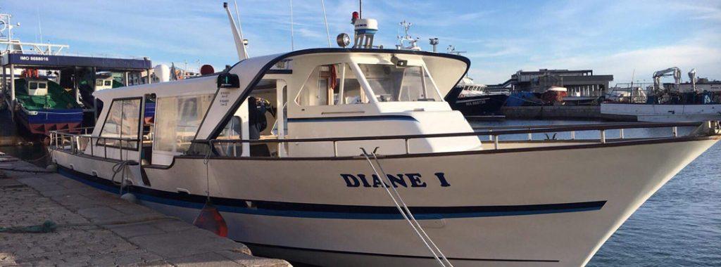 S'évader sur l'étang de Thau à bord du Diane 1
