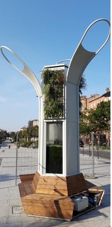 Kyanos arbre algues Toulouse air