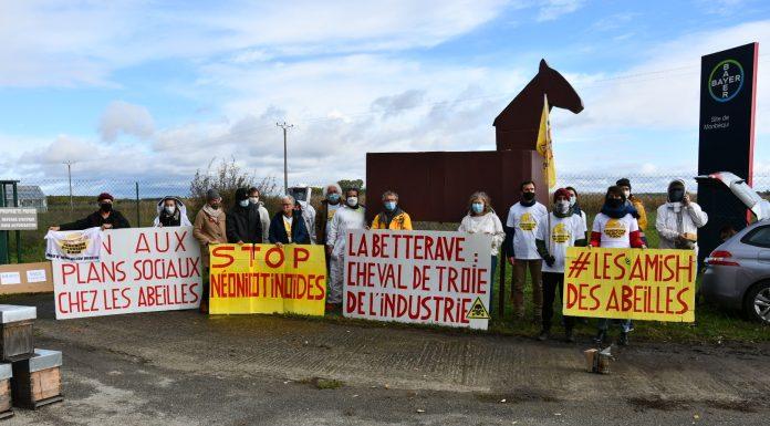 manifestation Syndicat des apiculteurs d'Occitanie