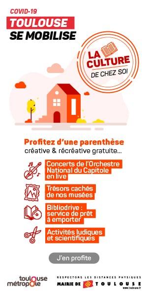 Toulouse culture
