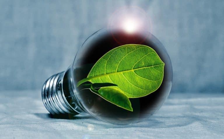 Achat groupé d'énergie verte : une démarche inédite à Ramonville.