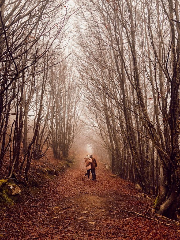 les monts de lacaune randonnées Tarn vacances
