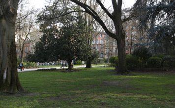 Jardin du grand rond Toulouse arbres