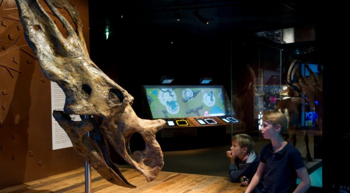 expo museum
