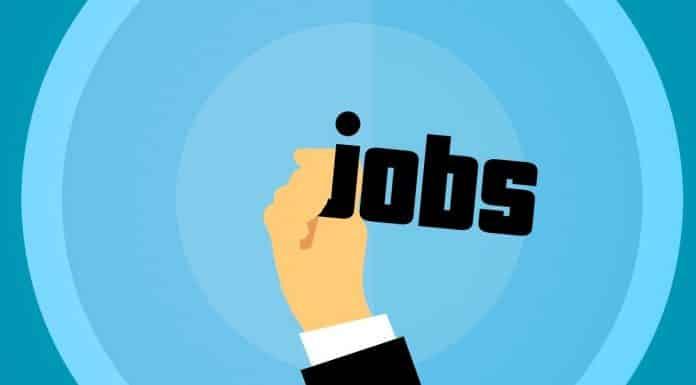 job ete toulouse emploi