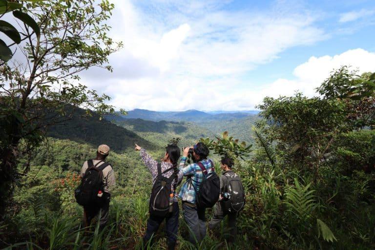 Deux Toulousains à la recherche de projets écolos en Amérique latine
