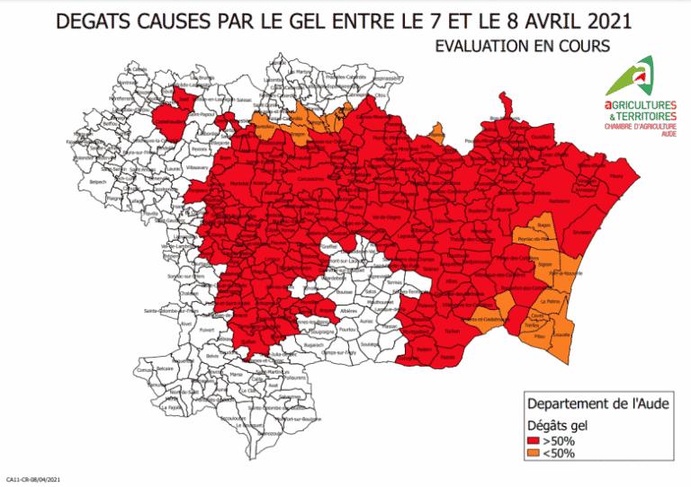 Aude : trois-quarts des terres agricoles ont été dévastées par le gel