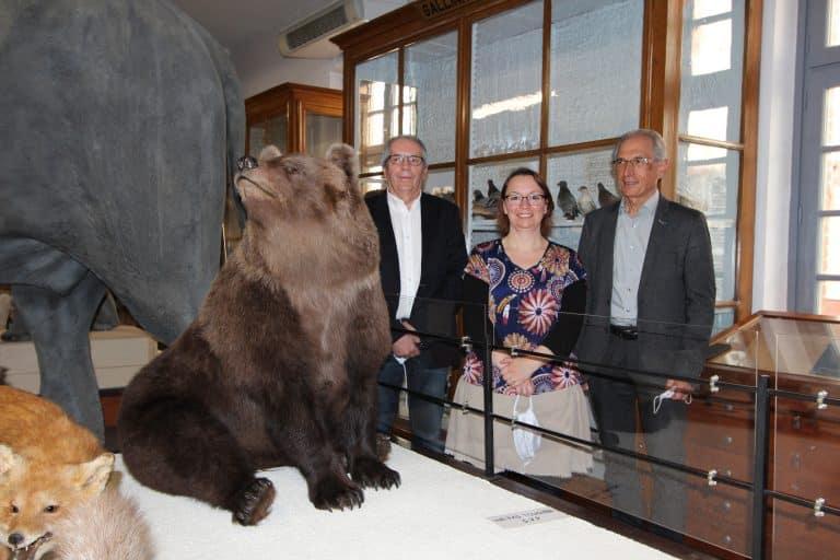 L'ourse Nénette rejoint le Muséum Victor-Brun de Montauban