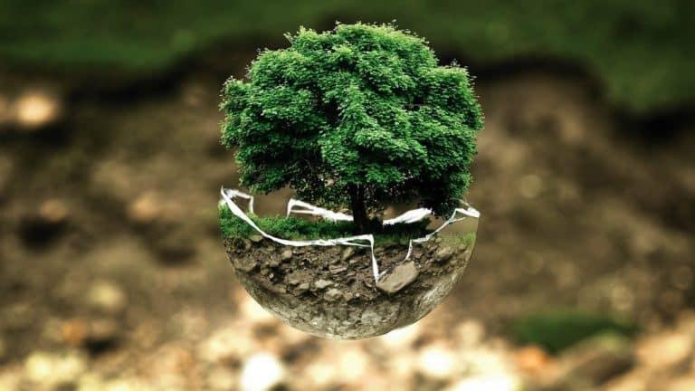 Guide pratique : comment réduire ses factures… et son impact environnemental