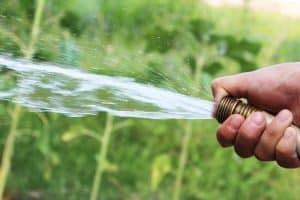 La préfecture de la Lozère indique que les bassins-versants du département sont sous vigilance pour éviter une situation de sécheresse. @CC0 Domaine public