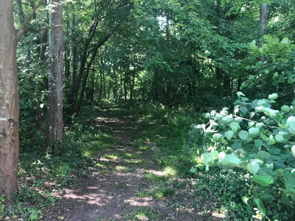 Les élus du Conseil départemental de la Haute-Garonne ont classé Espace naturel sensible le Parc de Ranse, sur la commune de Lévignac-sur-Save @Frédéric Lahache-Mairie de Lévignac
