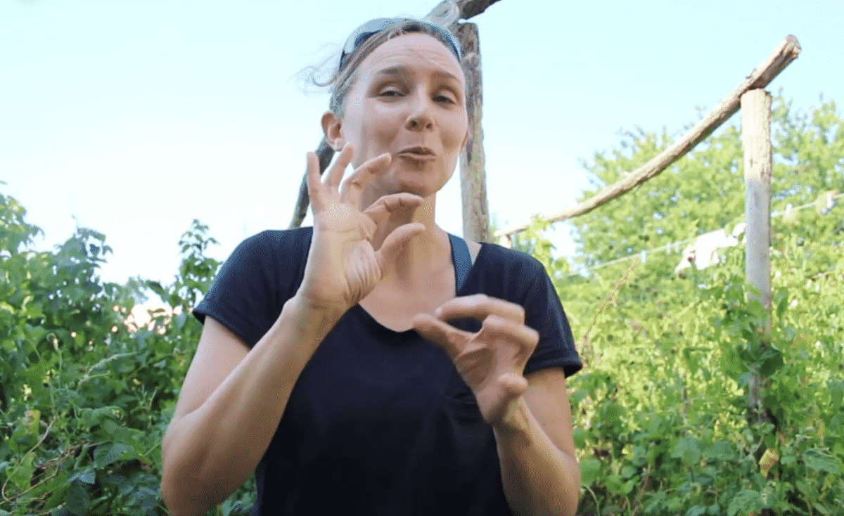 Ariège sorties nature langue des signes